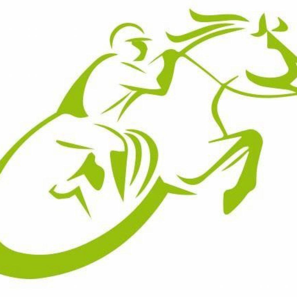 Logo Springreiten Handicap